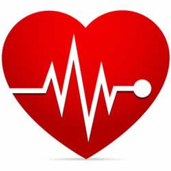 hoge hartslag zwangerschap